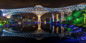 پل طبیعت تهران (4)