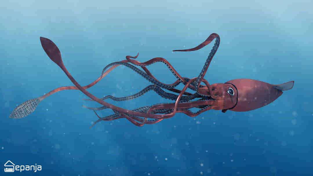 مرکب ماهی غول