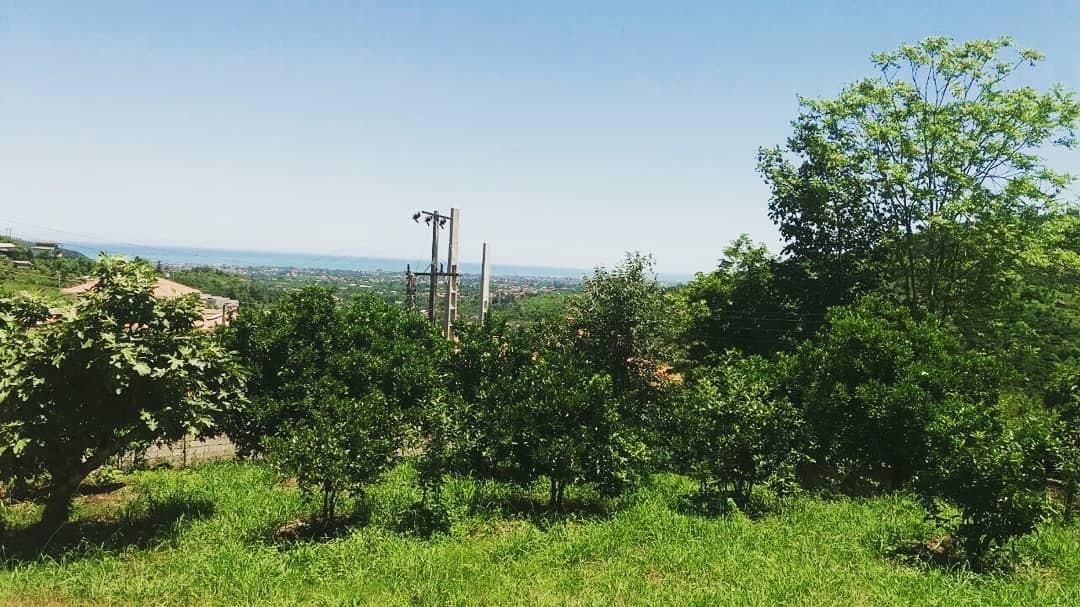 جنگلی ویلا باغ دربستی در سادات شهر مازندران