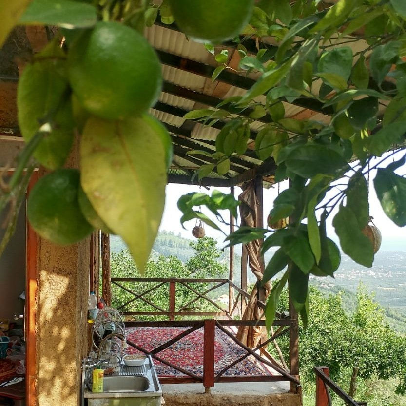 بوم گردی خانه سنتی در شیرود - بلوط اتاق 2