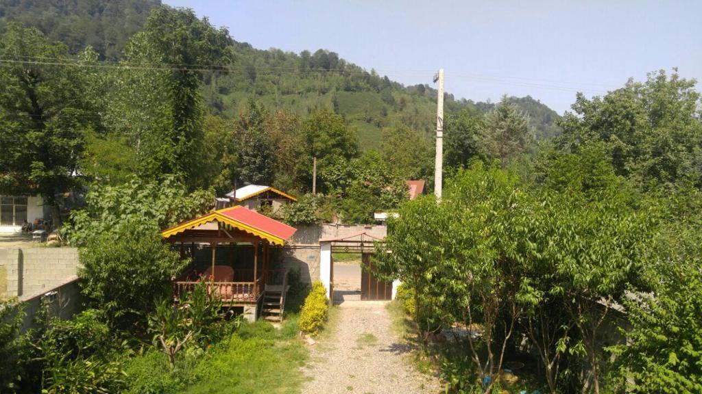 جنگلی ویلادربستی وشیک  در فومن